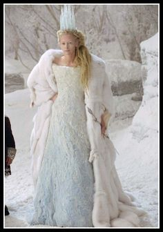 Now THIS is a fairy tale villain outfit.  1. Oddly shaped dress 2. Totally cool cloak, made from the skins flying polarbears 3. Crown of icicles - icicles! You can't beat that.  4. Wand to turn the rude and discourteous into stone.  Yeah man, this is how to do bad.