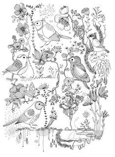 """""""page d'oiseaux"""", encre sur papier, Cécile Hudrisier"""