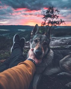 A photographer has created an adorable photo series which shows him petting his dog in beautiful settings. Honza Řeháček, and his dog Sitka have been travelling around the Czech. Animals And Pets, Cute Animals, Boy Dog, Photo Couple, Photos Voyages, Old Dogs, Photo Instagram, New Adventures, Dog Photos