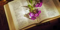 4 Simple Reasons God Gives Me More than I Can Handle - Christian Women Faith