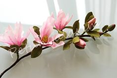 {Sensational deep pink Magnolia branch by PETUNYALARIM}
