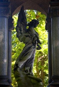 angel statue: I want one for my back yard!