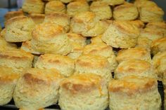 Possibly the easiest scones ever and they rise beautifully.