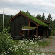 Our cabin in Norway Cozy Cabin, Cabins, Norway, House Styles, Home Decor, Decoration Home, Room Decor, Cottages, Home Interior Design