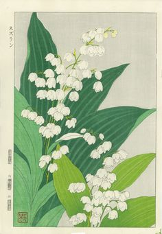 Kawarazaki Shodo Spring Flower Lily Of The Valley Woodblock Print Illustration Botanique, Japon Illustration, Plakat Design, Print Artist, Lily Of The Valley, Woodblock Print, Botanical Art, Aesthetic Art, Japanese Art