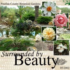 Layout: Surrounded by beauty