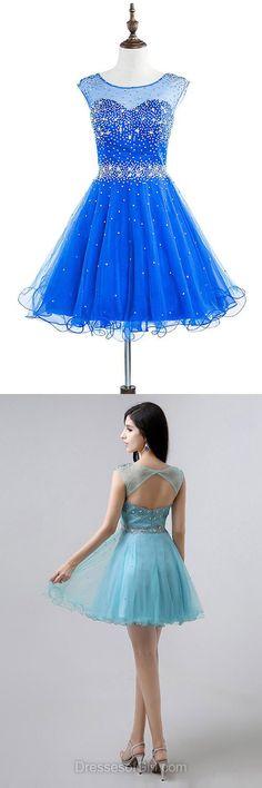Scoop Neck Prom Dresses, Tulle Formal Dresses, Open Back Evening Dresses, Royal Blue Homecoming Dresses, Short Party Dresses