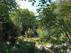 Mooie botanische tuin. Goed onderhouden. #Antwerpen