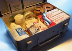 Dog First Aid Kit: Includes human medications that are approved for dogs.