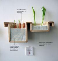 Groenten en fruit bewaren buiten koelkast. Zeer specifieke oplossingen.