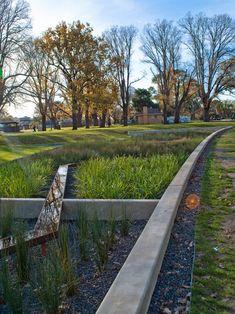 THE EDINBURGH GARDENS RAIN GARDEN IN MELBOURNE #geometric flowebed #aiuole geometriche