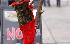 Trees wearing sweaters in Raleigh, N.C. on Glenwood South.