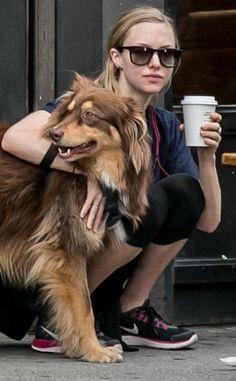 Amanda Seyfried's dog, Finn, is the spittin' image of dog, Winchester (Winnie)
