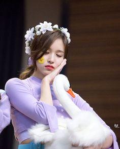 good night #MyouiMina #Mina #名井南 #미나 #TWICE #트와이스 #ONCE #원스 #Penguin #Minari #Japanese #NaYeon #Momo #Sana #ChaeYoung #DaHyun #Tzuyu #JiHyo #JeongYeon #JYP