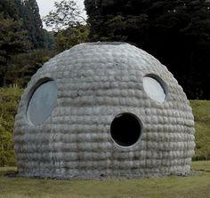 House for Future Caveman