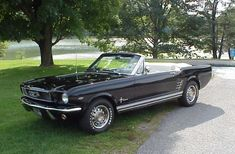 "My dream ""old"" car.  Black 1967 (year I was born) mustang convertible.  Only I want it with light grey interior and top."