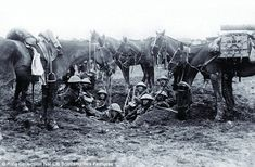 Awaiting orders: British cavalrymen like these got little chance for action on the Western Front