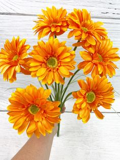 This Orange Paris Daisy Bush is long. Spring Wreaths, Summer Wreath, Front Door Decor, Wreaths For Front Door, Spring Decorations, Garden Yard Ideas, Daisies, Pretty Flowers, Home Decor Inspiration