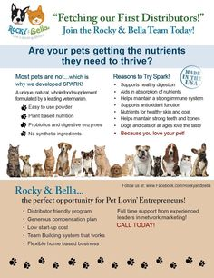 Make money' meet great people' and take pride in knowing that I am helping our pets to thrive with Spark our daily whole food, natural supplement. Pets play an important role in our lives with the contributions they make to the happiness of all of us, our families and others, this is why at Rocky and Bella we feel it is important to help with the animals that are less fortunate, with every purchase of Spark, we will make a donation Pet Rep ID:11506 Debbie Pokorn 303.835.0551…