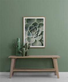 Cactus flower, poster