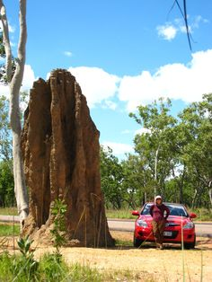 Giant Catedral Termite Mount in Litchfield National Park