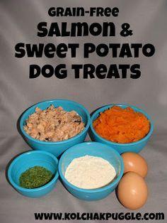 grain free salmon and sweet potato dog treat recipe for Riggins my cute, allerigic to grains, expensive dog.