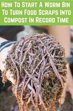 The process of using worms to break down waste materials into compost not only saves you money and effort but will be game changing in terms of your compost quality. Garden Compost, Veg Garden, Garden Care, Edible Garden, Lawn And Garden, Garden Soil, Garden Tips, Vegetable Gardening, Garden Landscaping