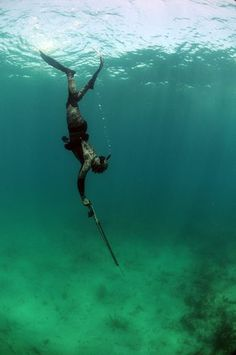 Underwater Hunting: an Introduction to Spearfishing