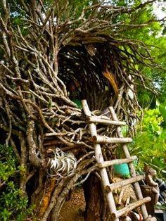 Magical-Tree-Houses-