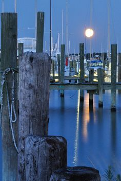 Inspiration for the marina area in TAMED - Little Creek, Norfolk, Virginia Norfolk Virginia, Virginia Homes, Virginia Beach, Chesapeake Virginia, Portsmouth Va, East Coast Usa, Howl At The Moon, Old Dominion, Float Your Boat