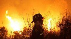 Ola de calor provoca incendios forestales en Chile