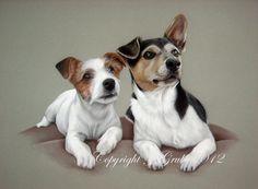 Pastel Pet Portraits - Jack Russell