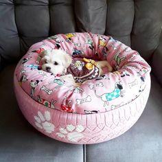 Cama para cachorro: 45 modelos de caminha artesanal e barata (passo a passo) Tire Craft, Tire Furniture, Diy Dog Bed, Old Tires, Pet Beds, Dog Houses, Diy Stuffed Animals, Dog Accessories, Fur Babies