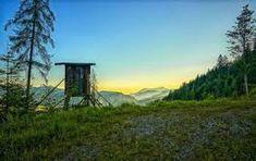 Bildergebnis für hagertal Mountains, Nature, Plants, Travel, Fishing, Voyage, Flora, Viajes, Plant