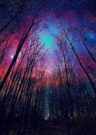 Resultado de imagen de paisajes de noche con estrellas