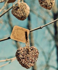 DIY *Love Birds* Wedding Theme Ideas, birds nests in the centerpieces, bird seed favors, fits with the tree invites, and the birdcage card holder, as well as the overall elegant vintage theme!!!