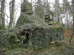 Derelict House almost swallowed up by vegetation.  by P_P_Hughes, via Flickr