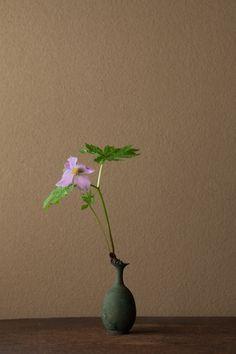 2012年5月26日(土)     日光の白根山に多く、花が立葵に似ていることからの名です。   花=白根葵(シラネアオイ)   器=青銅王子形水瓶(六朝時代)