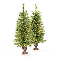 View 3.5' Pre-Lit Artificial Urn Trees, Cashmere with Clear Lights Deals at Big Lots