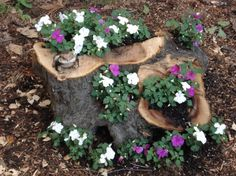 Tree stump flower pot idea. These are Purple and White Impatients.