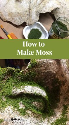 How to Make Moss - MadeByBarb - easy method to add realistic green moss to concrete Different methods of How to make moss on concrete and other Objects, realistic and durable ways to create natural green accents Concrete Crafts, Concrete Projects, Concrete Garden, Garden Crafts, Garden Projects, Garden Ideas, Container Gardening, Gardening Tips, Organic Gardening