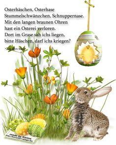 Kindergarten Portfolio, Planting For Kids, Smiley Emoji, Gb Bilder, Running Away, Magazine Design, Pin Collection, Happy Easter, Plants