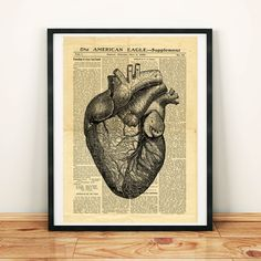 Human Heart Anatomy Science Medicine Antique Anatomy Printable Collage Old Newspaper Art Print 11 Heart Anatomy, Anatomy Art, Vintage Newspaper, Newspaper Paper, North America Map, West Art, Floral Skull, Dictionary Art, Human Heart