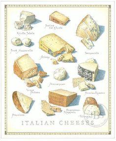 Italian Cheeses - John Burgoyne Studio #Art #Italian #Cheese