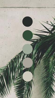 Brand color palette inspiration designed by Amari Creative, branding and design studio. Colour Pallette, Colour Schemes, Summer Colour Palette, Green Palette, Colour Board, Color Swatches, Color Inspiration, Aesthetic Wallpapers, Wallpaper Backgrounds