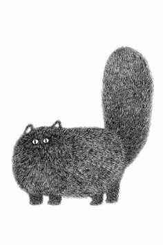 Cat Art Drawings of Felines Too Fluffy for Their Own Good Fisher Cat, Cat Brain, Clumping Cat Litter, Owning A Cat, Cat Memorial, Cat Behavior, Fluffy Cat, Textiles, Typography Art