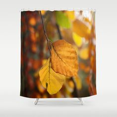 Free Worldwide Shipping Available Today!  Indian Summer Shower Curtain.  Designed by UtArt.