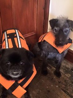 Ready for their boating holiday on the Norfolk broads