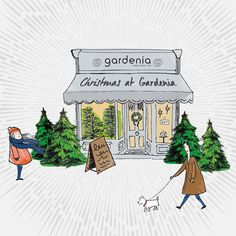 It's Sunday and all our stores are open full to bursting with Christmas and ready to serve you! #christmastrees #christmaswreaths table centres decorations and more. #11thdayofgardenia
