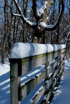 Bridge Winter